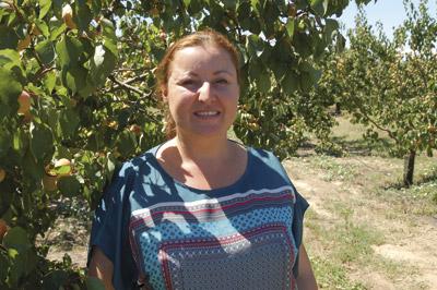 bf81d23bcb6 Abricot Rouge du Roussillon
