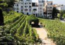 Y aura-t-il bientôt plus de raisin à Montmartre que dans les P.-O.? [par Jean-Paul Pelras]
