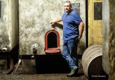 Carnet de vendanges : un bar à vin pour sauver l'année [par Yann Kerveno]