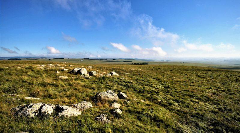 Prairie sur l'Aubrac avec ciel bleu